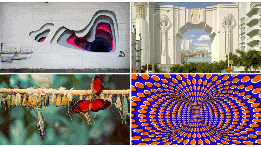Left to right: 3D street art by 1010, creating the illusion of depth. Mural for Fontainebleau Hotel, Richard Haas, 1985-86, Demolished 2002. Metamorphosis — a caterpillar flourishing into a butterfly. Optical illusion.